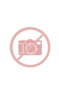 GRANADILLA Pánske kúpacie šortky GRANADILLA Pinguins Pink ružová L