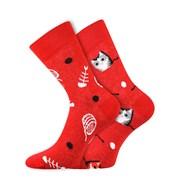 Trendy ponožky Mačky - každá ponožka iná